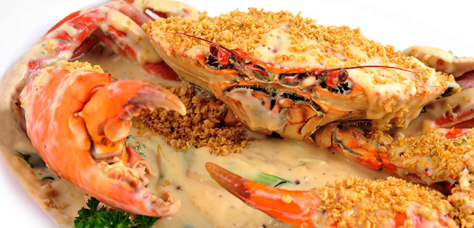 The best most affordable seafood restaurant in singapore for Animals that are included in the cuisine of seafood