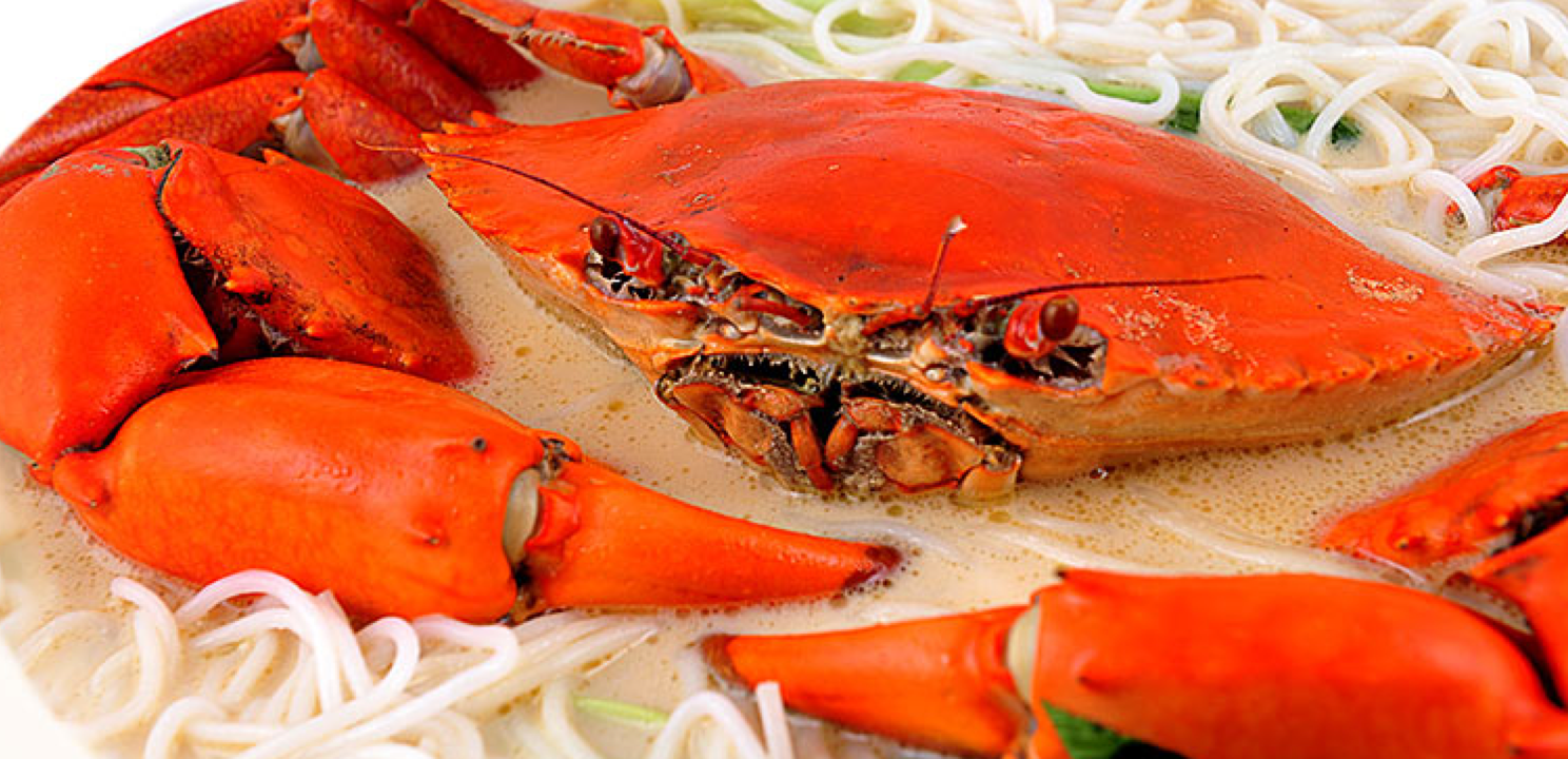 The best most affordable seafood restaurant in singapore for Best fish restaurants